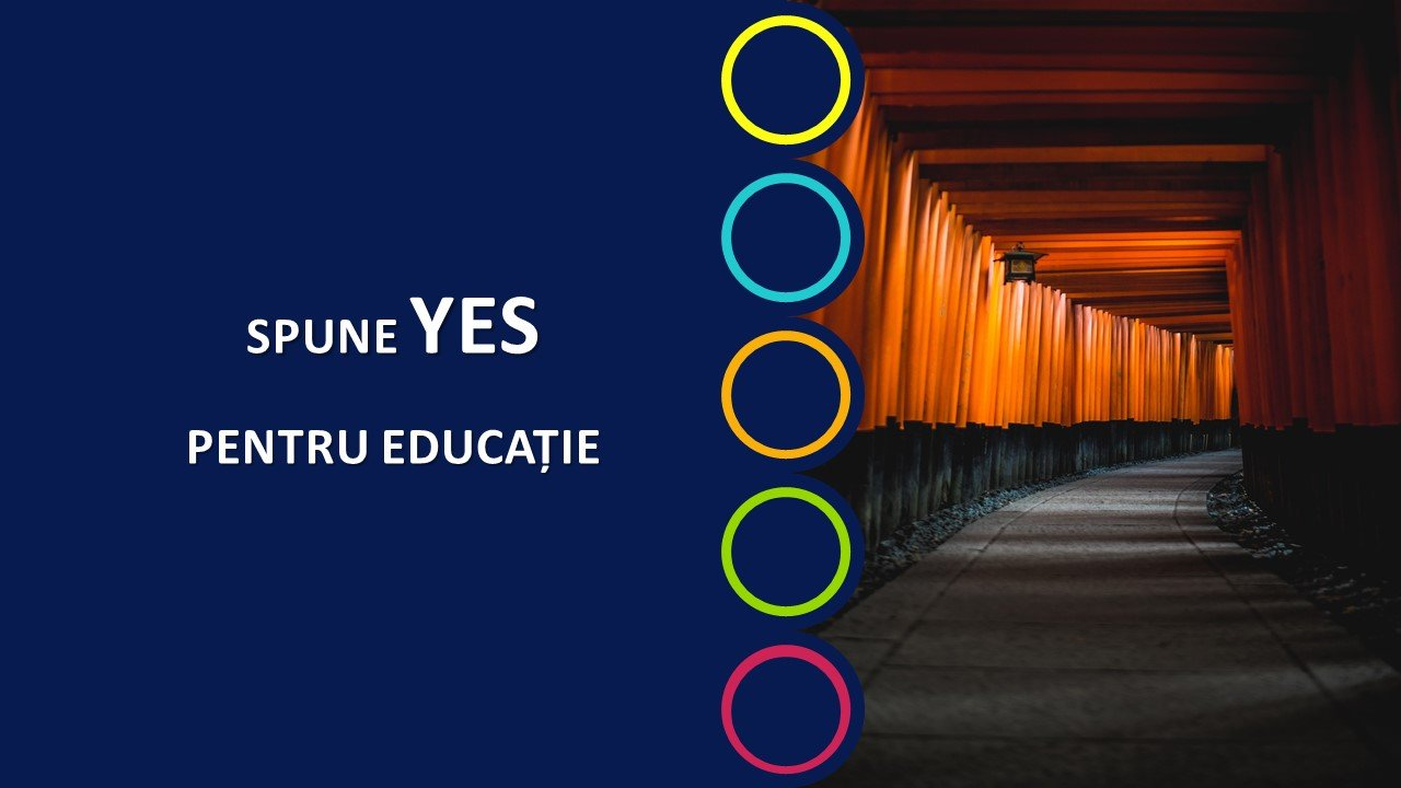 Strategie de cariera Your Education Shape
